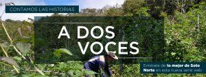 A Dos Voces - Minesa